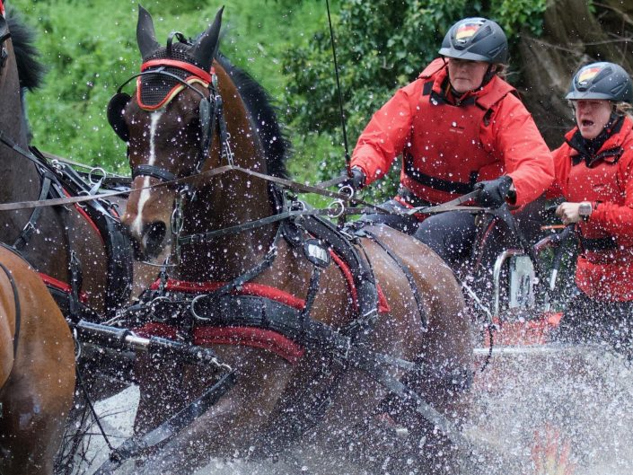Royal Windsor Horse Show Marathon 2019